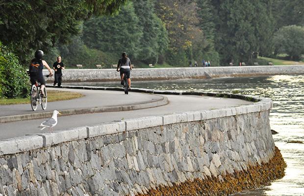 Um mundo de atividades no Stanley Park