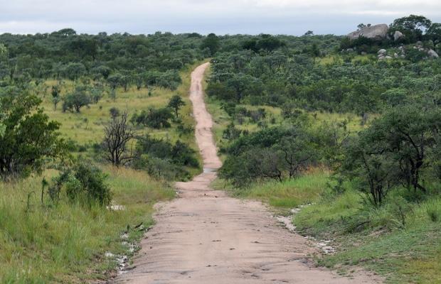 Como é o safári no Kruger National Park