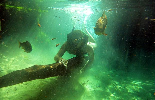 aquario-encantado-04
