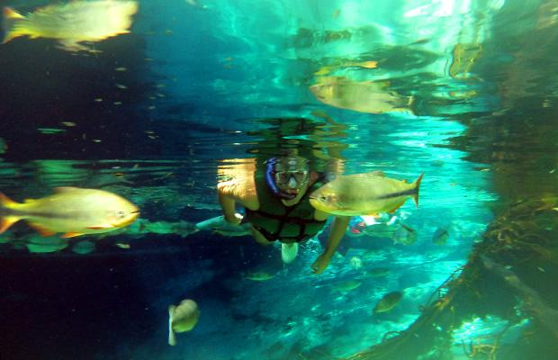 aquario-encantado-10
