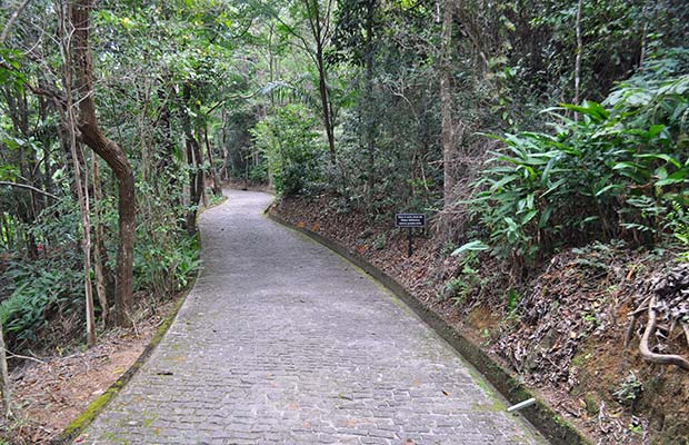 mosteiro-zen-de-ibiraçu-02