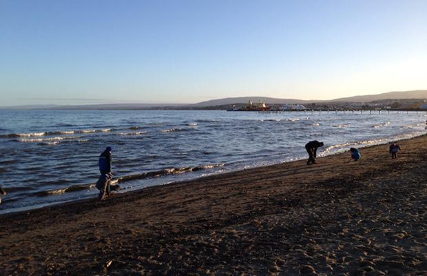 Descubra o que fazer em Punta Arenas