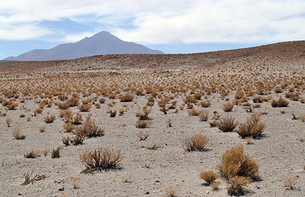 Nor Lípez: entre salares e lagoas bolivianas
