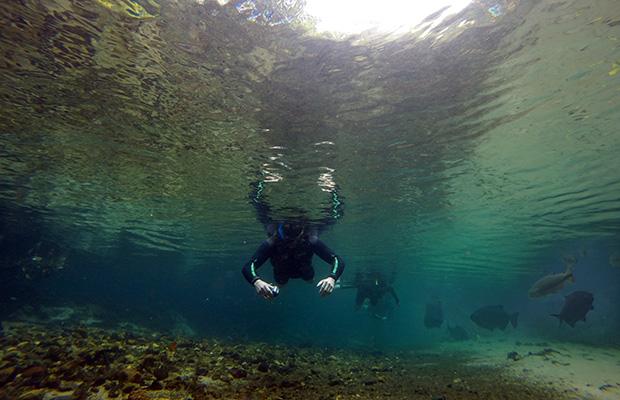 Bonito: flutuação no Rio da Prata