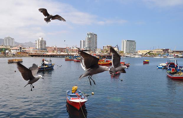 A imperdível La Caleta de Antofagasta