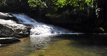 A trilha da Cachoeira da Lage, em Ilhabela