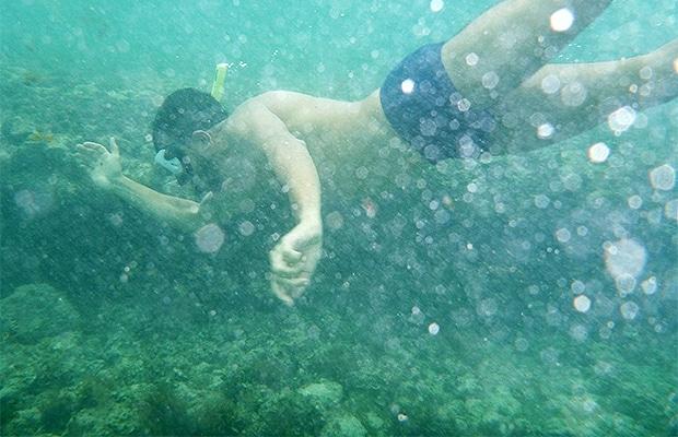 mergulho-em-abrolhos-06