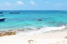 Isla Acuario: o melhor lugar de San Andrés