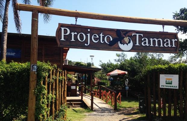 Conheça o Projeto Tamar em Vitória