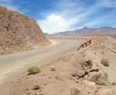 Como chegar ao Atacama