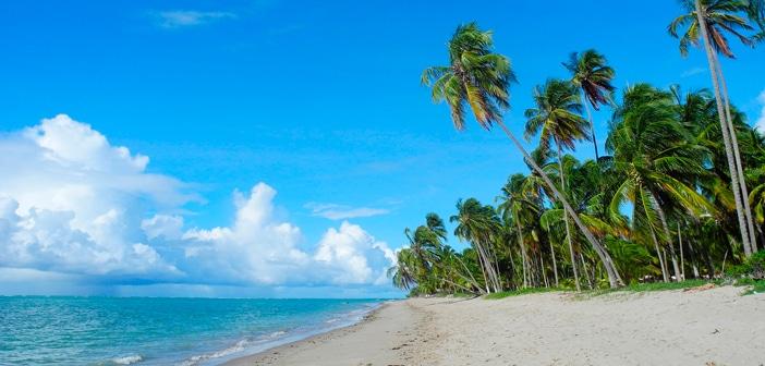 Melhores praias do nordeste