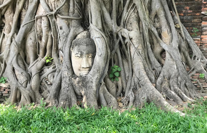 Um dia em Ayutthaya: guia rápido e prático para sua viagem